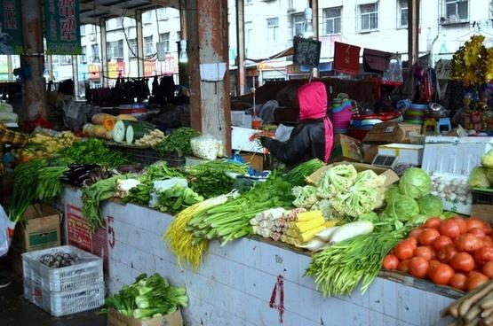 farmer039s market