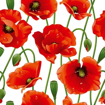 blooming flowers background bright colorful modern design
