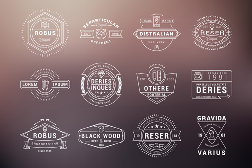 fashion vintage labels creative design vector