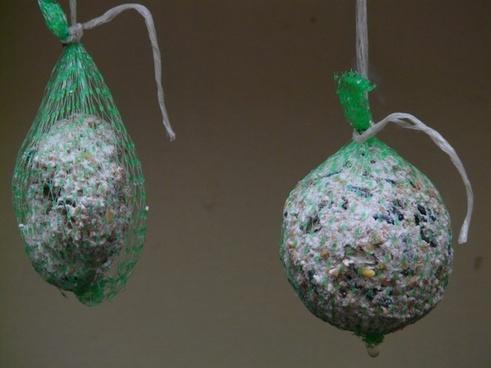 fat balls bird seed feed