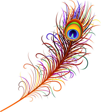 feather design elements vector illustration