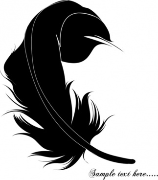 feather reflection vector