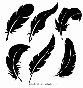 feathers icons black silhouette sketch