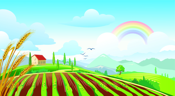 field landscape with rainbow