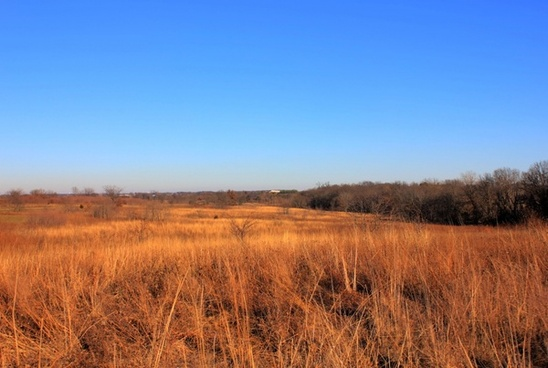 fields in winter at weldon springs state natural area missouri