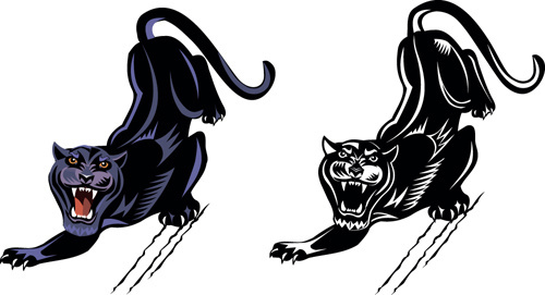 fierce panther vector