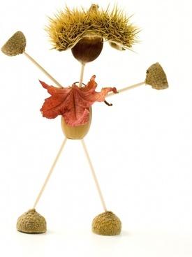 figure acorn