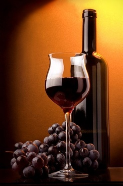 fine red wine picture 6