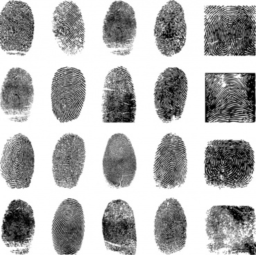 fingerprint templates collection black white flat realistic sketch