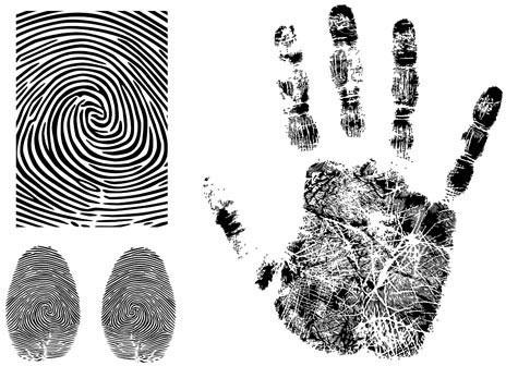 fingerprint vector 3