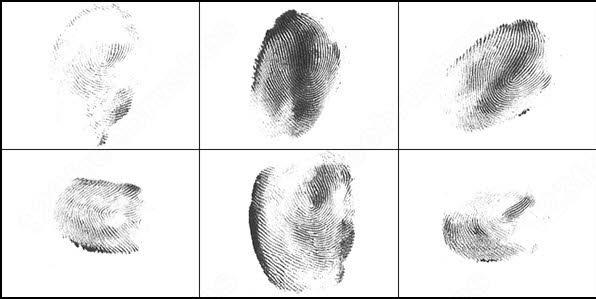 fingerprints brush