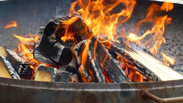 fire charcoal campfire