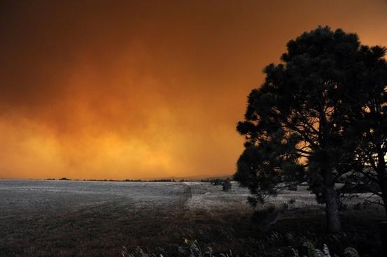 fire landscape colorado
