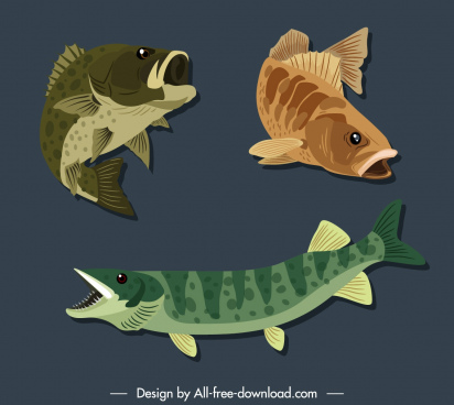 fish species icons motion sketch colored classic handdrawn
