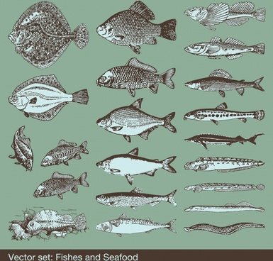 fishes species icons black white handdrawn sketch