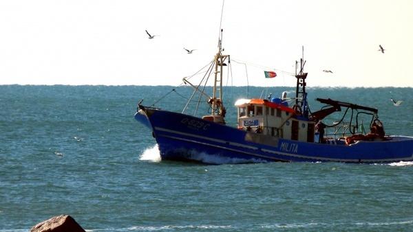 fishing boat algarve gulls