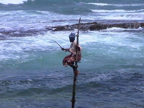 fishing fisherman sri lanka