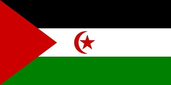 Flag Of Western Sahara clip art