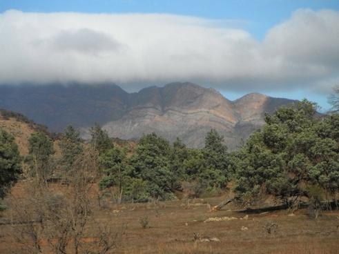 flinder039s ranges south australia