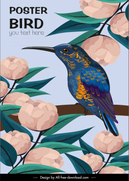 floral bird poster colorful classical design
