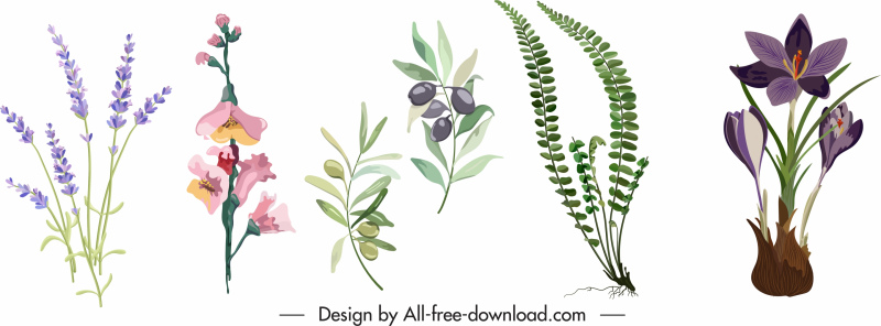 floral icons colorful classical design