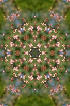 floral mandala 3