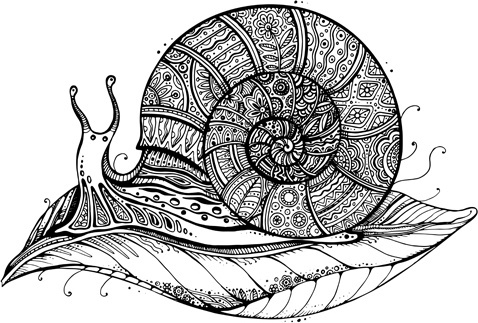 floral with snail vector