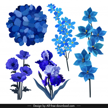 floras icons dark blue decor classical sketch