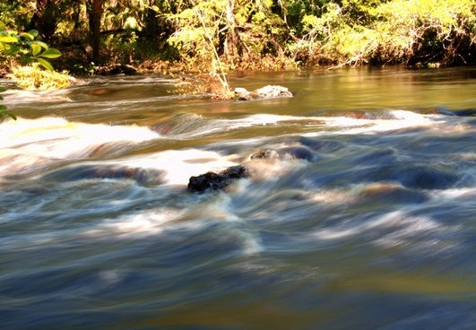 florida stream creek