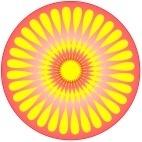 flower 32 base