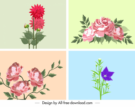 flower backgrounds colorful decor blooming sketch