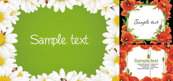 flower decoration frame vector