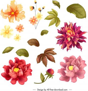 flower design elements colorful petals leaf icons