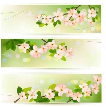 flower green banners vectors
