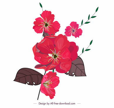 flower icon blooming sketch colored classical design