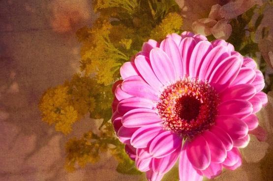 flower on floral background