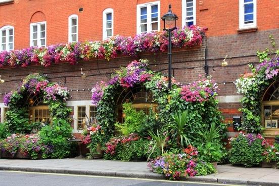 flower rich restaurant