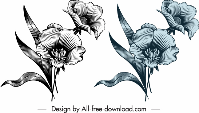 flower template shiny elegant design vintage sketch