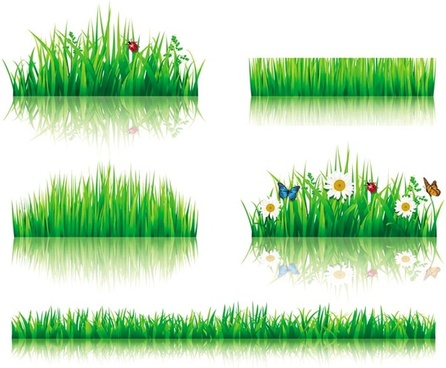 flower with grass border vector