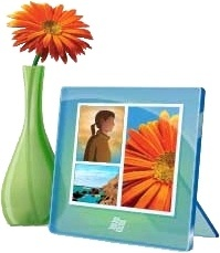 Flowerpot and picture frame