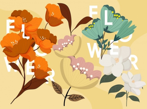 flowers background colorful petals texts icons decor