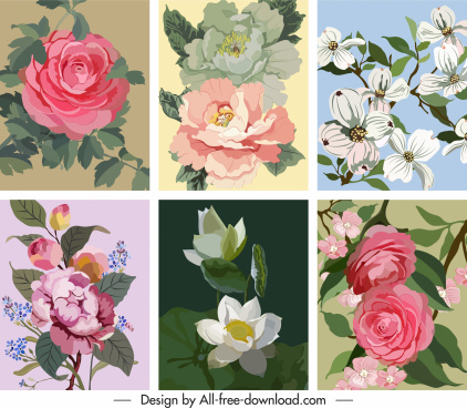 flowers background templates colorful classical design bloosom sketch