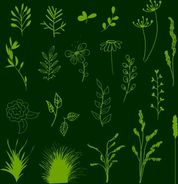 flowers background various flat types isolation green decoration