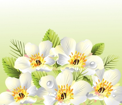 morning flowers background colorful 3d design