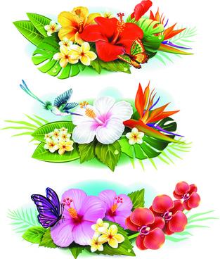 flowers borders vector set