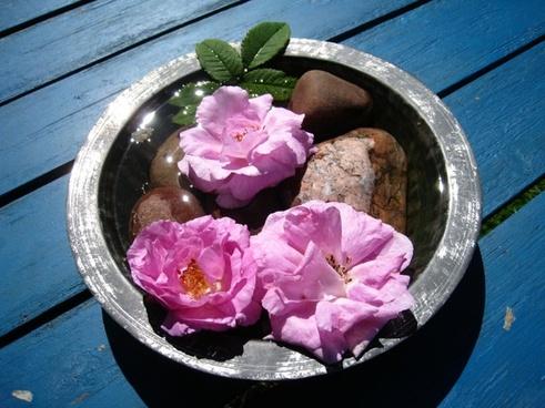 flowers bowl arrangement