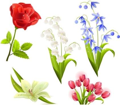 flowers flower beautiful 5 vector