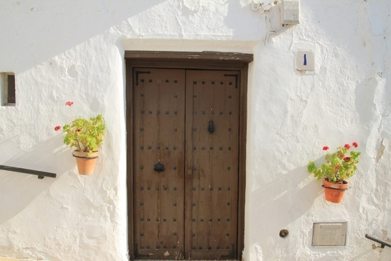 flowers front door white wall