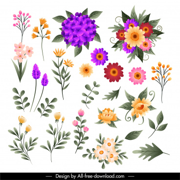 flowers icons colorful petals leaf sketch