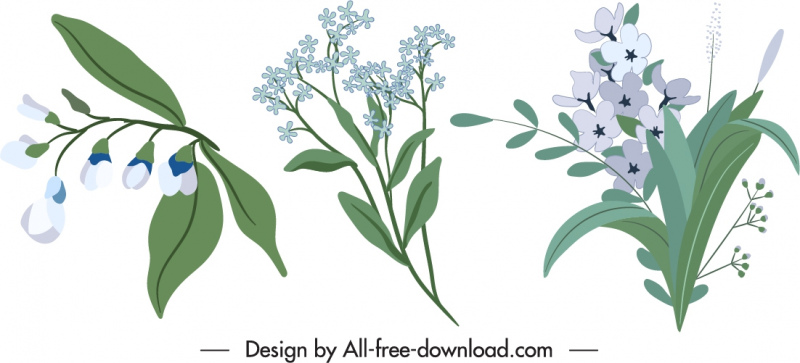 flowers icons elegant classic design colored handdrawn sketch